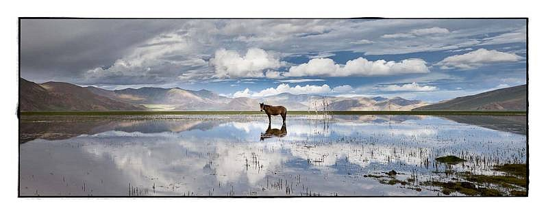 Phil Borges, Flooded Pastureland ed. 1/20 chromogenic print
