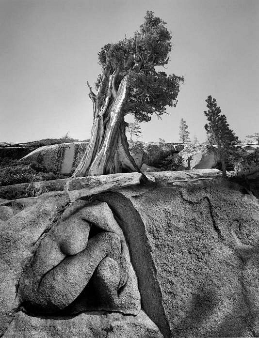 the life and work of jerry uelsmann a photographer Uelsmann's photographic technique for jerry uelsmann, the camera is the tool which enables him to interact in a different manner, emotionally instead of mentally with the world from which he gets his inspiration for his artistic work, in order to capture the true essence of life.
