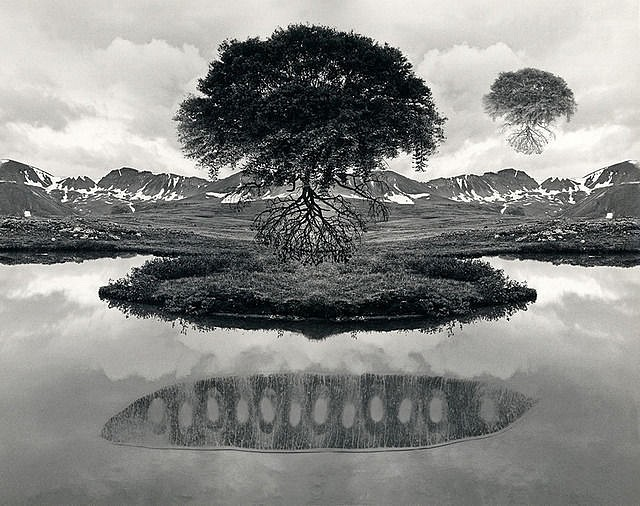 Jerry Uelsmann, Untitled, 1969- floating tree, rare silver gelatin print