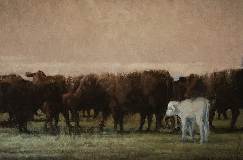 Terry Gardner, White Calf II 2015, oil on canvas